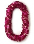 Double Lei 40 inches length